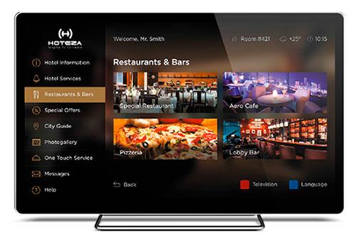 Hoteza TV License